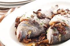 Baked sea bream with mushrooms and parsley Royalty Free Stock Photo