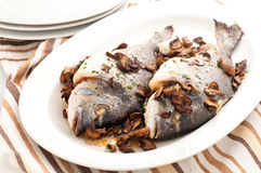 Baked sea bream with mushrooms and parsley Royalty Free Stock Photos