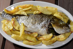 Baked sea bream with potatoes Royalty Free Stock Image