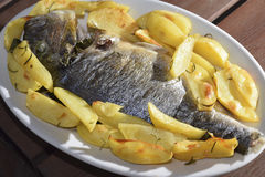 Baked sea bream with potatoes Stock Photo