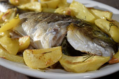 Baked sea bream with potatoes Royalty Free Stock Photography