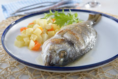 Baked sea bream with vegetables Royalty Free Stock Photos