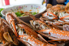 Baked sea crab seafood Royalty Free Stock Photo