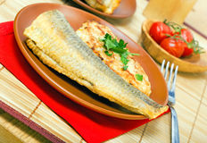 Baked sea fish Stock Images