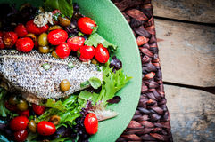 Baked seabass with tomatoes and basil on rustic wooden backgroun Stock Image