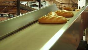 Baked släntrar av bröd i bagerit stock video