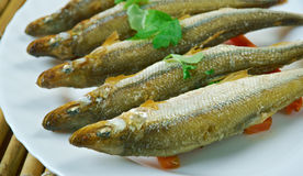 Baked smelt. Served with roasted carrots Stock Photography