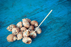 Baked snails Royalty Free Stock Photos