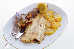 Baked sole with clams Stock Photography