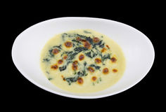 Baked spinach with cheese isolated on the black background with Stock Image