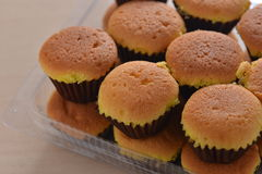 Baked sponge cake Stock Image