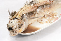 Baked Striped snakehead fish with salt coated. Stock Photos