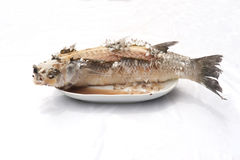 Baked Striped snakehead fish with salt coated. Royalty Free Stock Photography