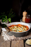 Baked Stuffed Conchiglioni with Tomato Royalty Free Stock Images