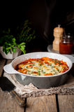 Baked Stuffed Conchiglioni with Tomato Royalty Free Stock Photo
