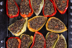 Baked Stuffed Peppers with Meat, Wild Rice, Vegetables and Greens Stock Images