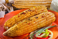 Baked sweet corn Royalty Free Stock Images