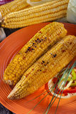 Baked sweet corn Stock Images