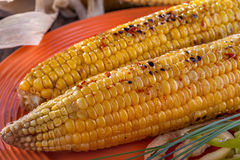 Baked sweet corn Stock Photography