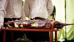 Baked swordfish Stock Images