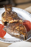 Baked tilapia served with red pepper sauce royalty free stock photo