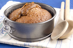 Baked toffee pudding in a springform Royalty Free Stock Photography