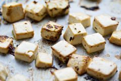 Baked tofu with spices Royalty Free Stock Photo