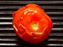 Baked tomato Stock Image