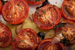 Baked tomatoes. Stock Photo
