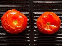 Baked tomatoes Royalty Free Stock Photo