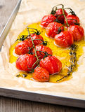 Baked tomatoes Royalty Free Stock Image