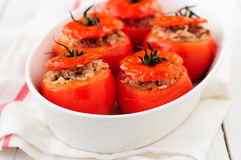 Baked Tomatoes Stuffed with Rice and Beef Mince royalty free stock photos