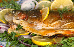 Baked trout. With lemon and onion Royalty Free Stock Image