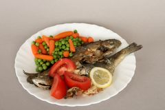 Free Baked Trout Royalty Free Stock Photo - 15701965
