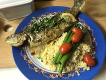 Baked trout on a cushion of bulgur with vegetables, asparagus and tarragon. royalty free stock images