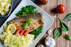 Baked trout fillet with mashed potatoes and steamed spinach royalty free stock photos