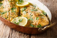 Baked trout fish with garlic lemon butter sauce, parsley closeup. In a copper frying pan on a table. horizontal royalty free stock images