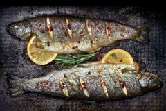 Baked trout fish with lemon and rosemary and spice on grunge metal plate still life stock photo