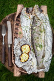 Baked trout with grilled potatoes on grill Stock Photography