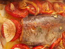 Baked trout for Mediterranean recipe. Baked trout with tomatoes and onion for Mediterranean recipe stock photo