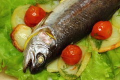 Baked trout. Organic whole trout cooked with vegetables  served for dinner stock images