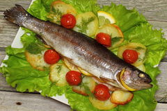 Baked trout. Organic whole trout cooked with vegetables served for dinner Shallow DOF royalty free stock image