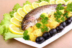 Baked trout and potatoes, olives, lemon with salad Royalty Free Stock Photography