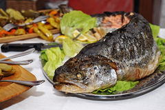 Baked trout with salad garnish Stock Images