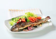 Baked trout with tomatoes and green salad Royalty Free Stock Photo