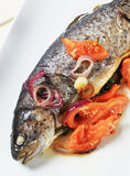 Baked trout with tomatoes and onion Stock Image
