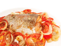 Baked  trout with tomatoes and onion for Mediterranean recipe Royalty Free Stock Image