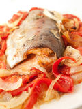 Baked  trout with tomatoes and onion for Mediterranean recipe Royalty Free Stock Images