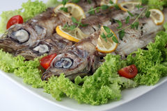 Baked trout and vegetables Stock Photos