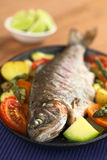 Baked Trout with Vegetables Royalty Free Stock Photo